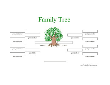 4 Generation Family Tree 4 Generation Family Tree In Color Template