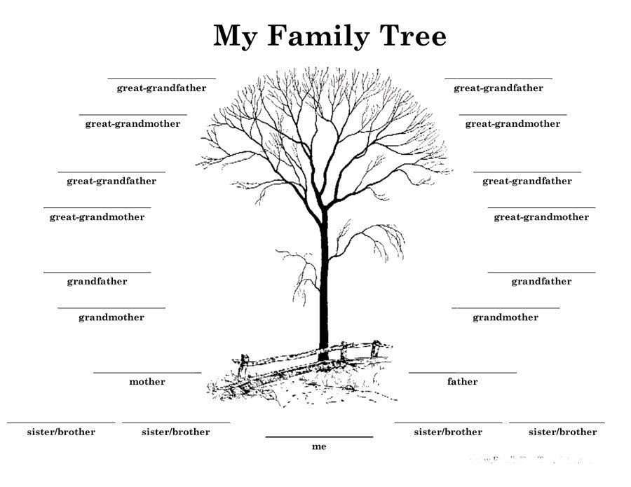 4 Generation Family Tree Download Family Tree Template 13