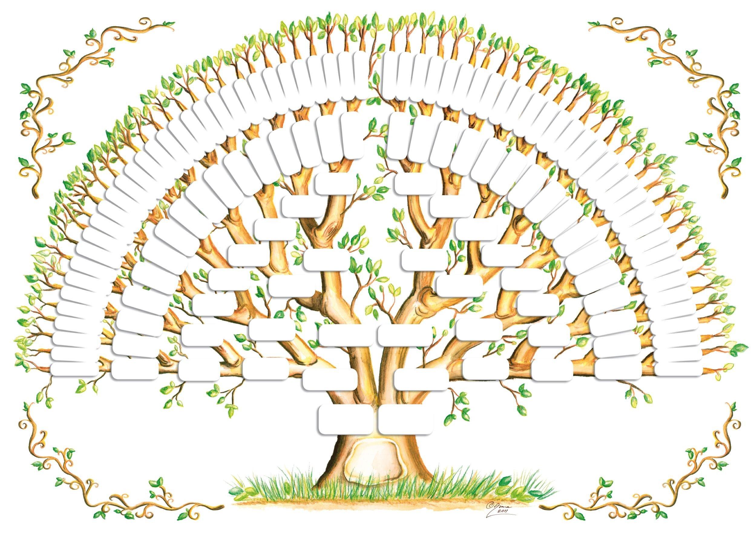 8 Generation Family Tree Template 5 Generation Family Tree Template Tree Gallery