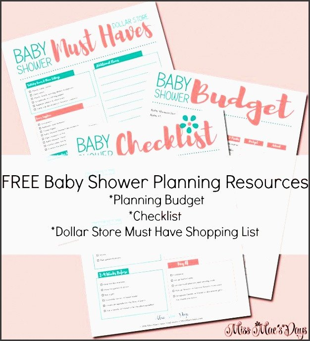 Baby Shower Planner Template 9 Free Baby Shower Planner Template Sampletemplatess