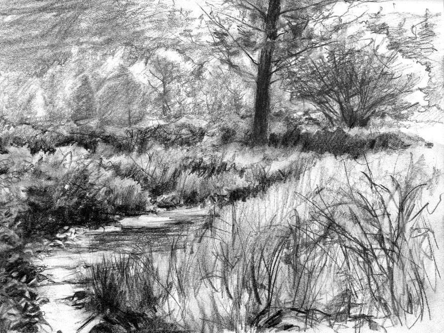 Beautiful Drawings Of Nature Pencil Sketches Of Nature Scenery