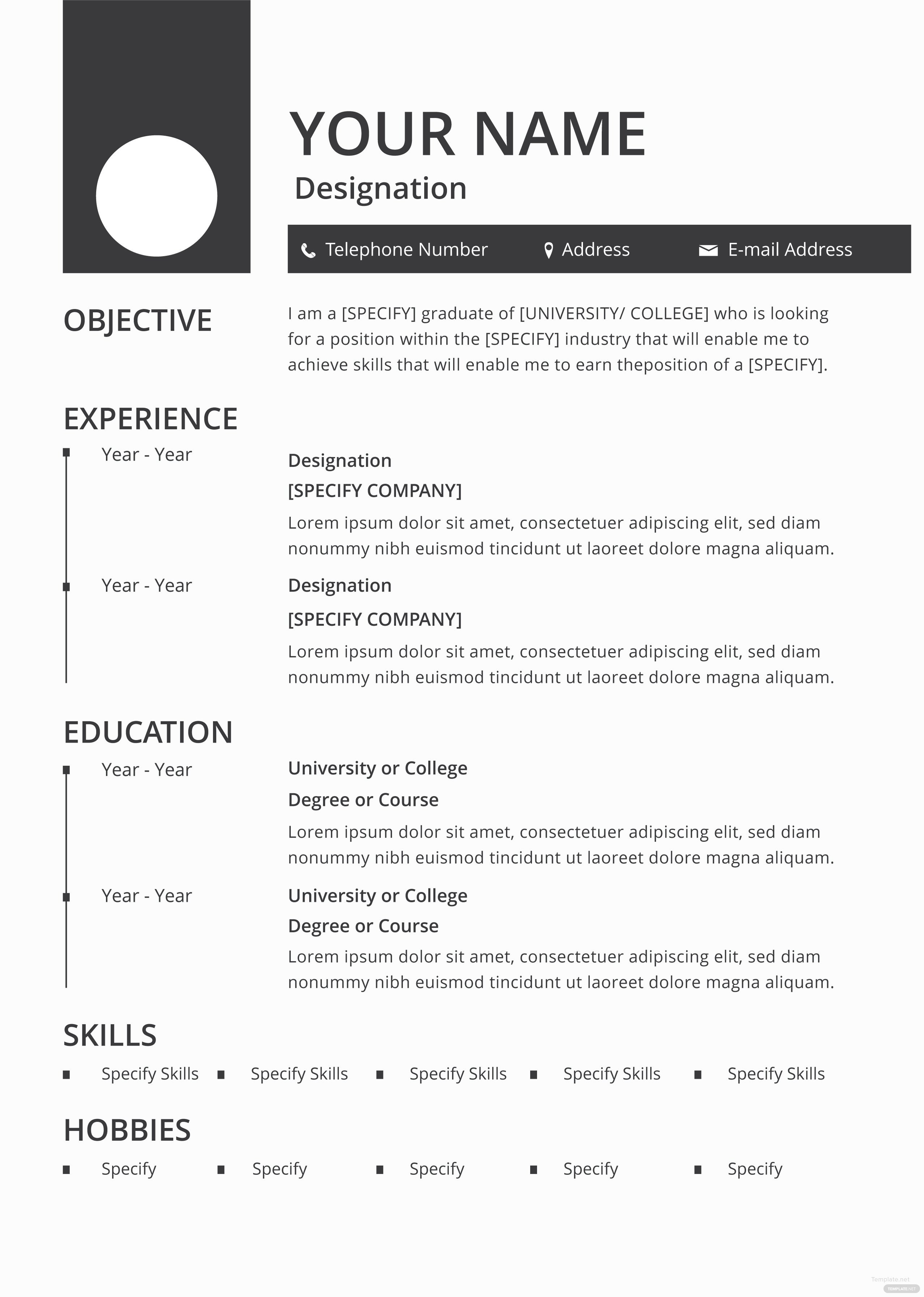 Blank Simple Resume Template Free Blank Resume and Cv Template In Adobe Shop