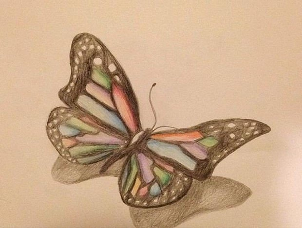 20 Butterfly Drawings Art Ideas