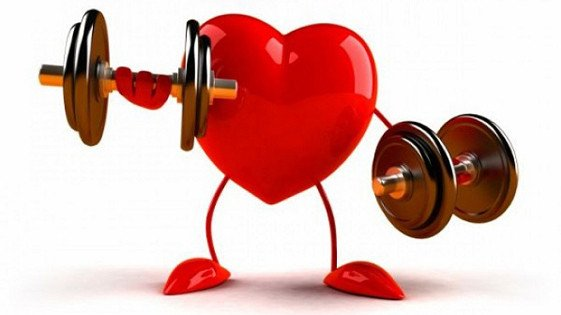 Cardiology Consult Template Cardiologist Consultation Heartscope Victoria