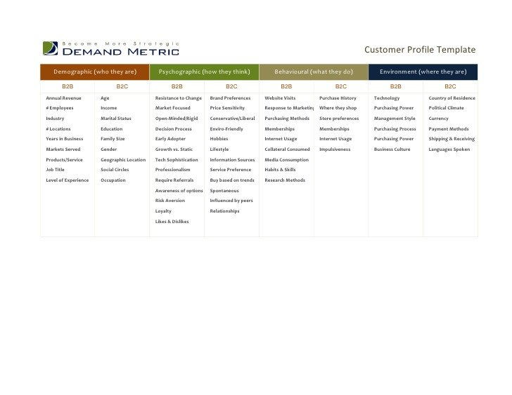 Customer Profile Template Excel Customer Profile Template