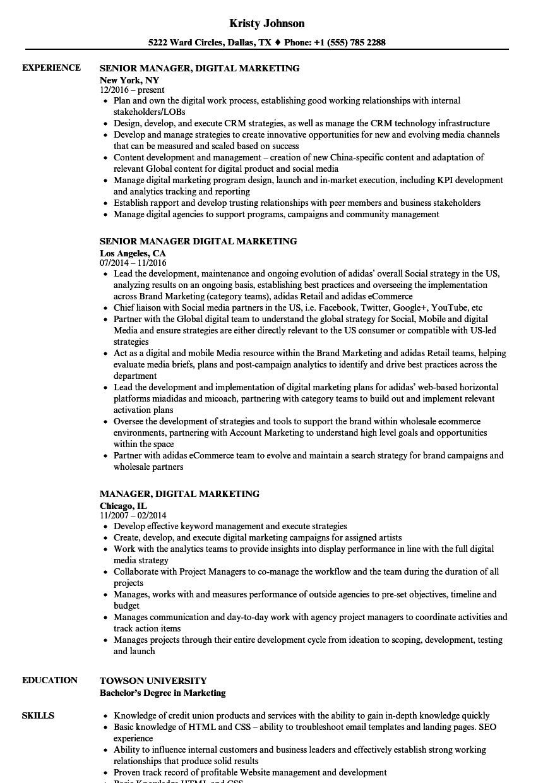Digital Marketing Resume Sample Manager Digital Marketing Resume Samples