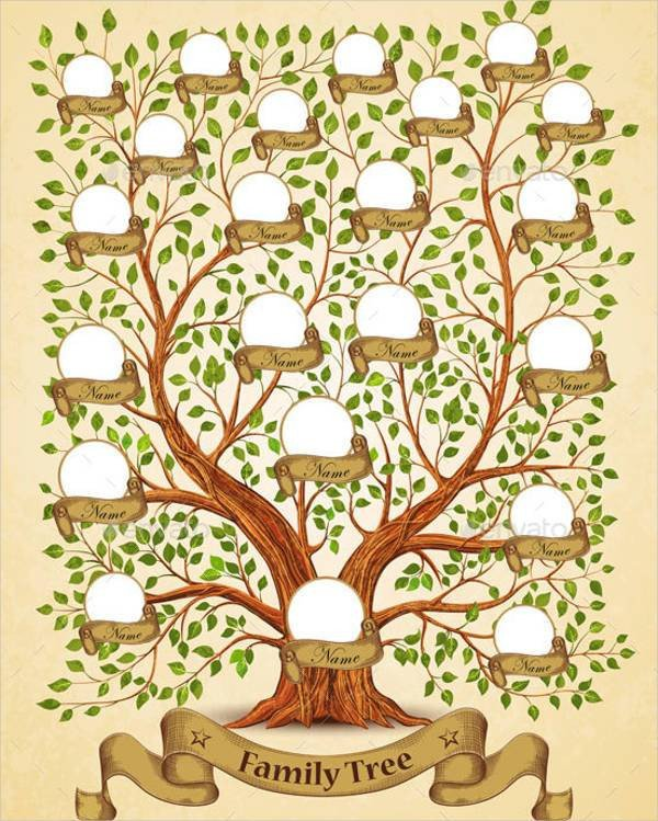 Family Tree with Pictures Template 51 Family Tree Templates Free Sample Example format