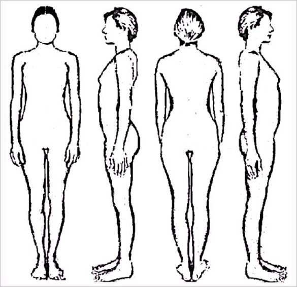Female Body Outline Template Human Body Outline Drawing at Getdrawings