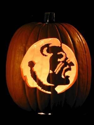 Florida Gator Pumpkin Stencil Carving 9 Best Fsu Halloween Images On Pinterest