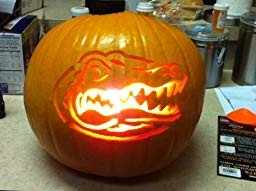 Amazon Customer reviews NCAA Florida Gators Pumpkin