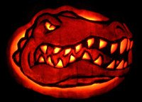 Florida Gator Pumpkin Stencil Carving the Pumpkin Wizard • View topic Florida Gator