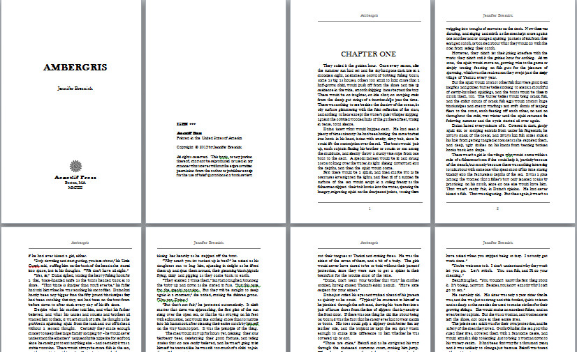 Free Booklet Template Word Nanowrimo Prep the Wide World Of Word Writers