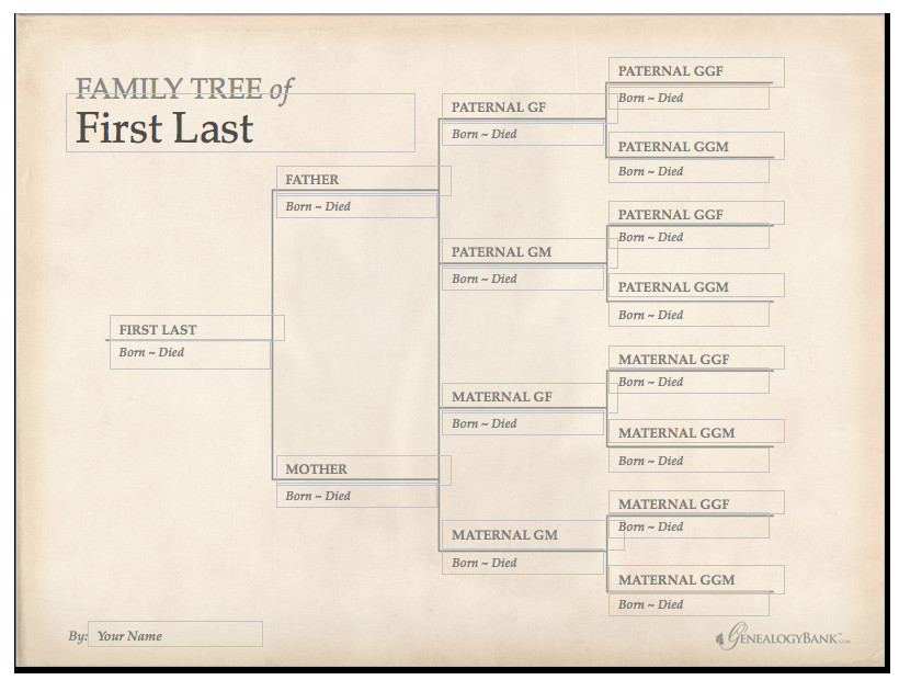 Free Editable Family Tree Templates Family Tree Template & How to Get Started