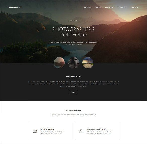 Free Photography Website Templates 28 Graphy Website themes & Templates