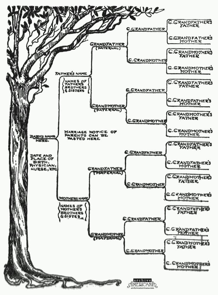 Free Printable Family Tree Template Start A Genealogical Record for Your Family 1905