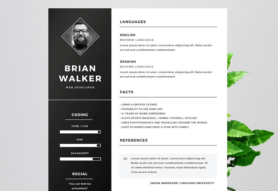Free Resume Templates Microsoft 65 Eye Catching Cv Templates for Ms Word