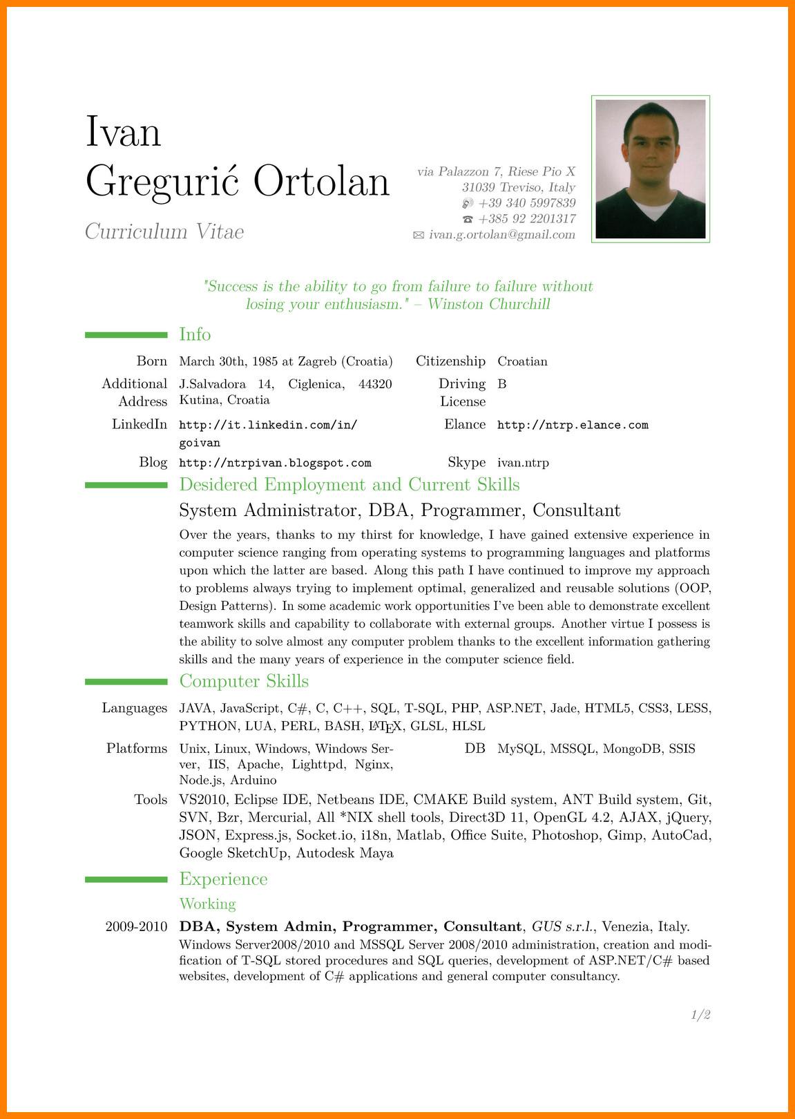 9 cv in english example doc
