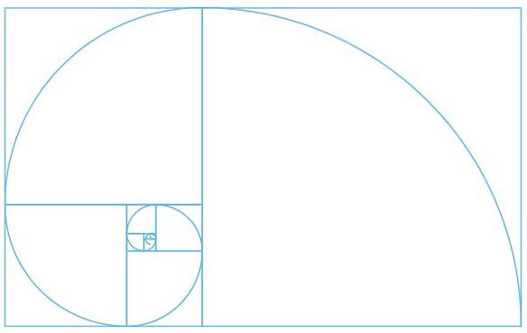 14 Golden Ratio in Design Easy Way