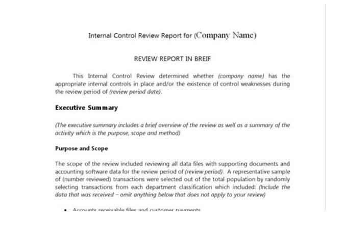 Internal Audit Report Samples Auditor forms Vitalics