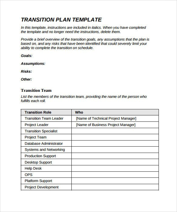 9 Sample Transition Plans PDF Word Pages