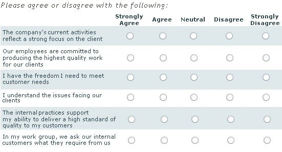 Likert Scale Survey Template 5 Free Likert Scale Templates Word Excel Pdf formats