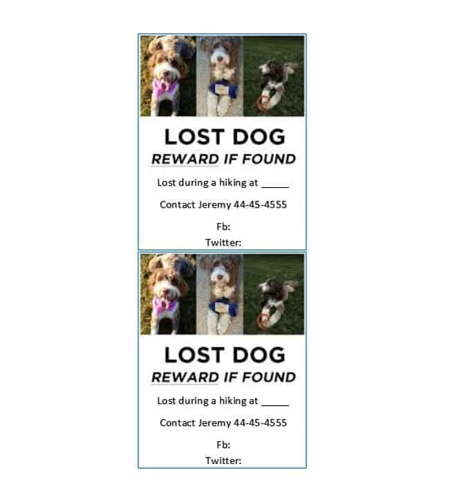 Lost Dog Flyer Template 40 Lost Pet Flyers [missing Cat Dog Poster] Template