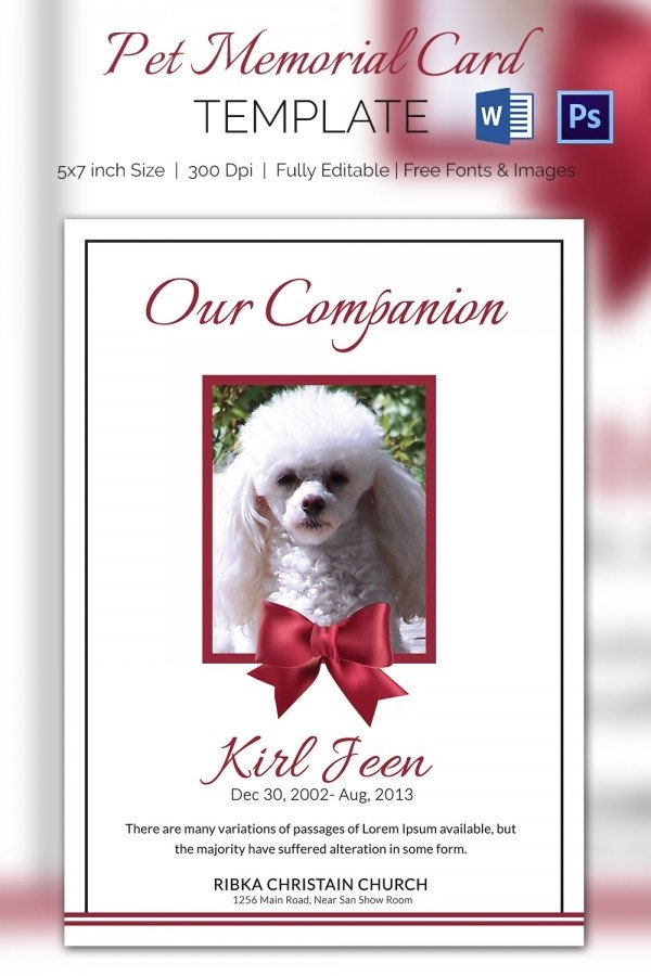 Memorial Card Template Free Download 5 Pet Memorial Cards Word Psd Ai