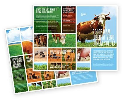 Microsoft Publisher Booklet Templates 25 Best Ideas About Microsoft Publisher On Pinterest