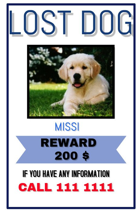 Missing Dog Flyer Template Lost Pet Template