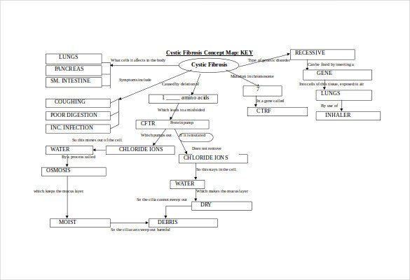 Concept Map Template 10 Download Free Documents in PDF