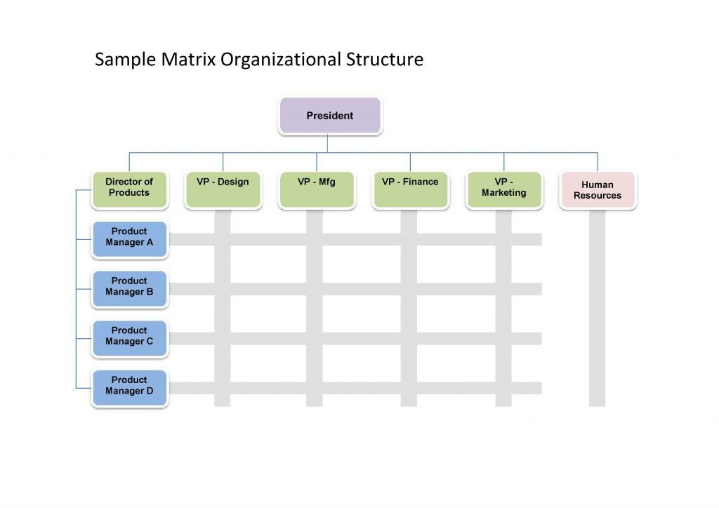 Organizational Chart Template Word 25 Best Free organizational Chart Template In Word Pdf Excel