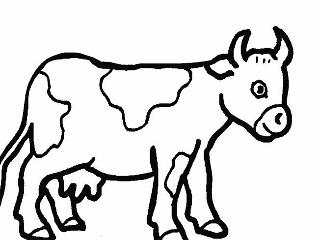 Cow Template Animal Templates