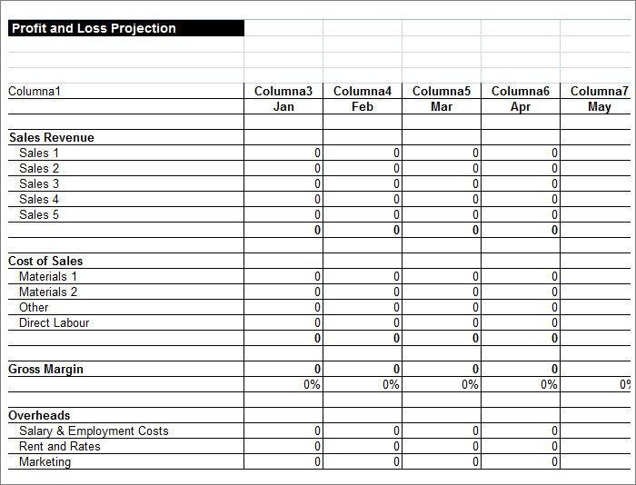 Profit Loss Template Excel 11 Profit and Loss Statements Word Pdf Google Docs