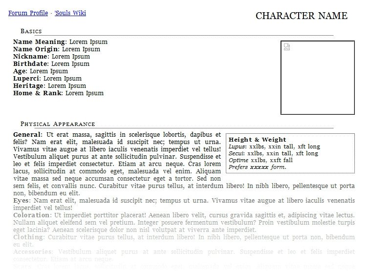 Roleplay Character Sheet Template Character Bio Template