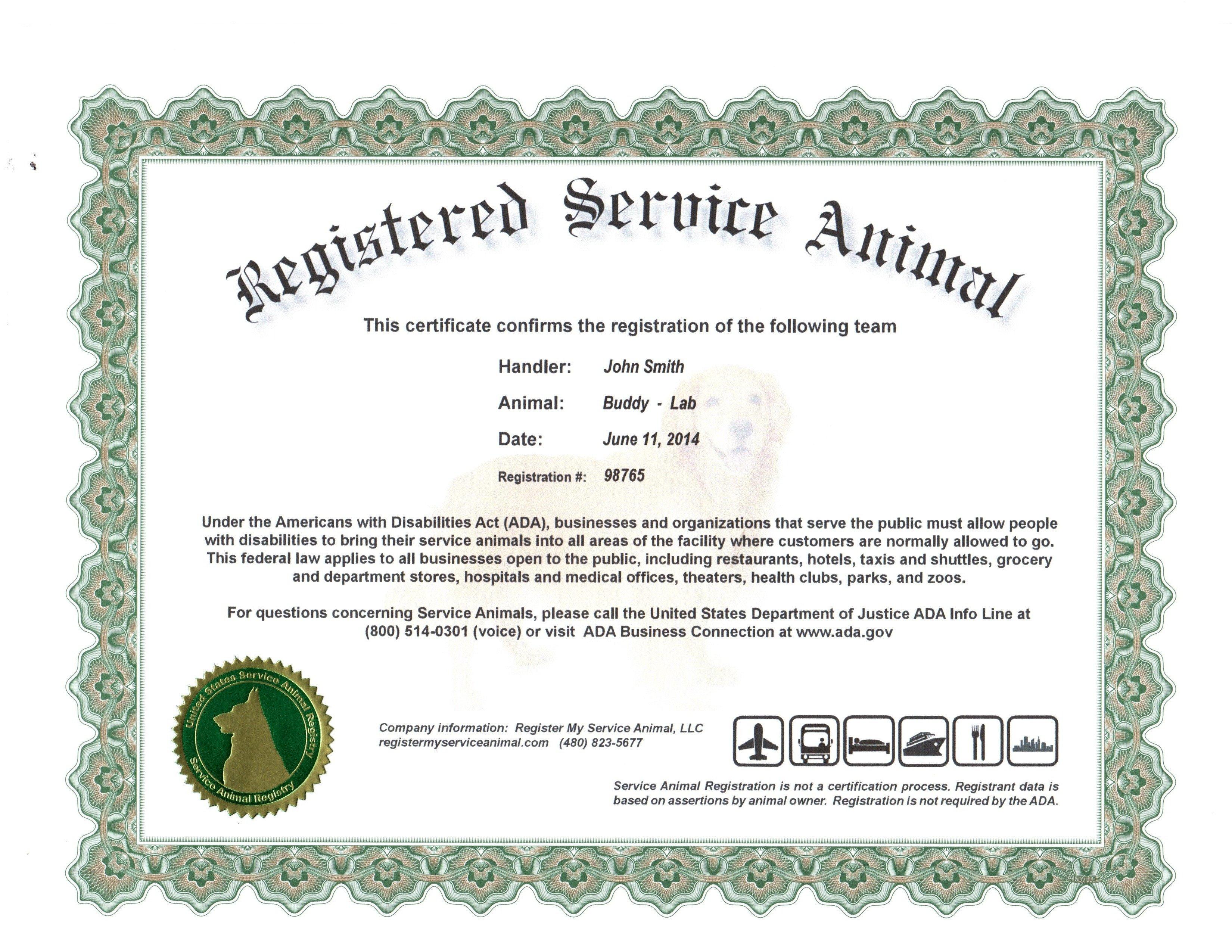 Service Dog Certificate Template 24 Of Service Animal Certificate Template