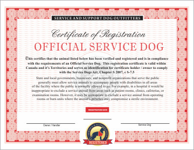 Service Dog Certificate Template Canadian Service Dog Emotional and therapy Service Dog