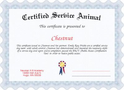 Service Dog Certificate Template Certified Service Animal Certificate