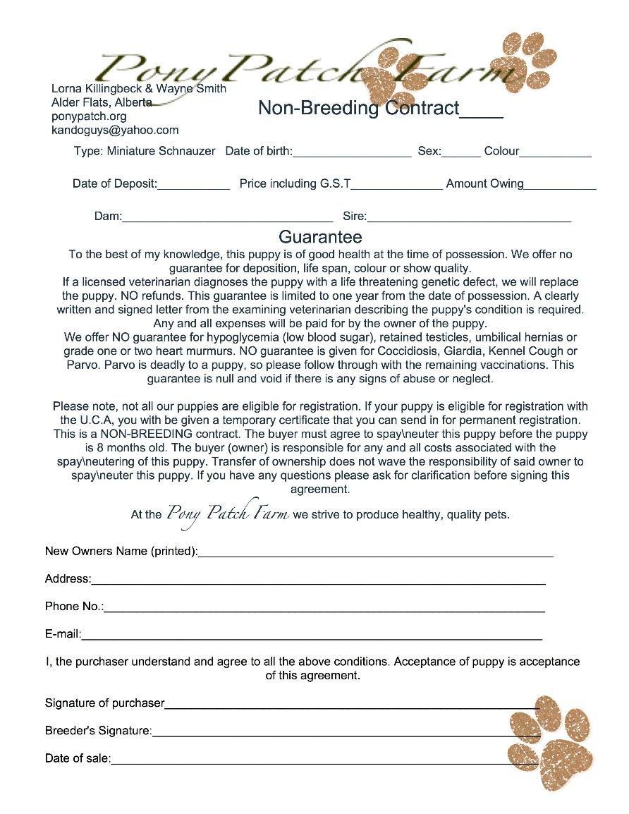 Spay and Neuter Contract Template Health Guarantee Miniature Schnauzer Edmonton