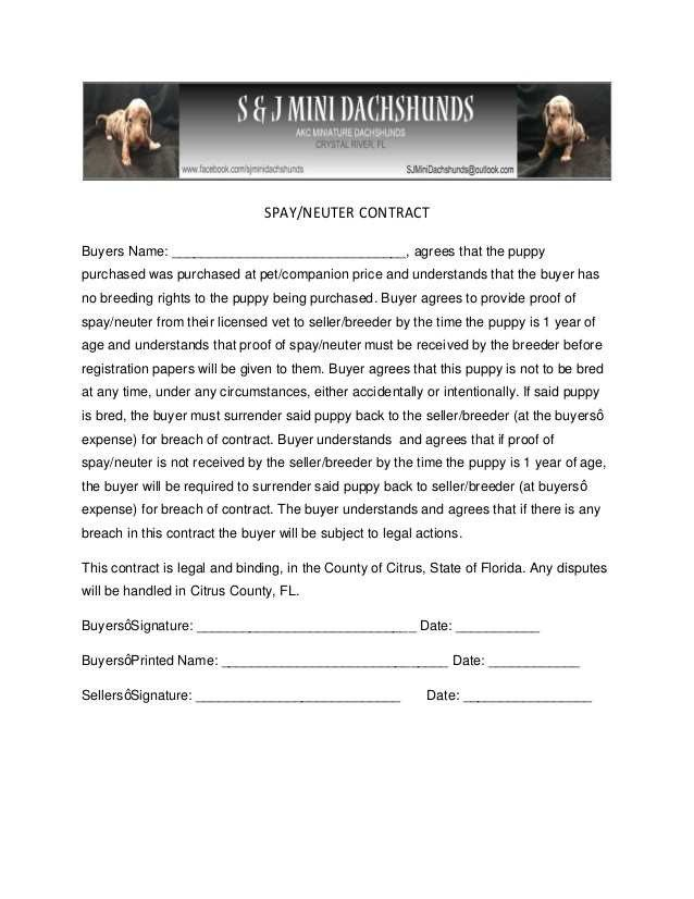 Spay and Neuter Contract Template Spay Neuter Agreement Contract New S & J Mini Dachshunds