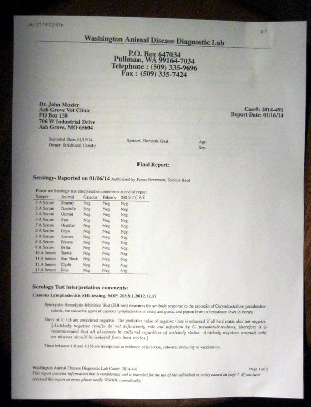 Std Results form Pdf Try the Army Method to Std Test the Right Way
