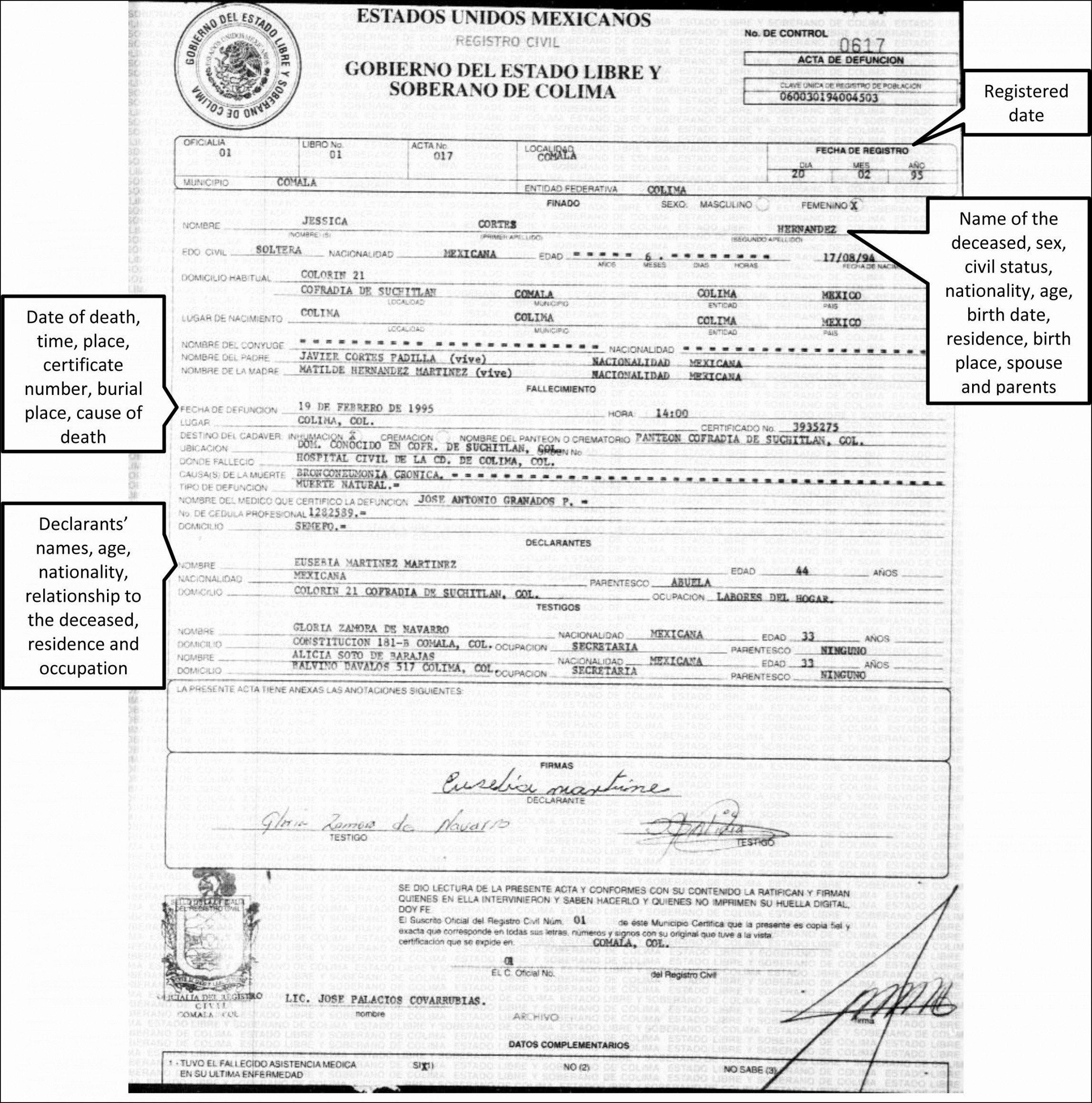 Translation Of Divorce Certificate Template Translation Divorce Certificate Template