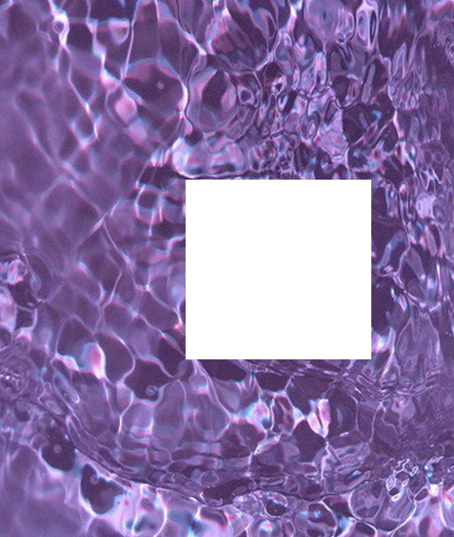 Polaroid Overlays Like Reblog If Using x Transparents