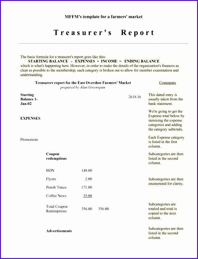 Treasurer Report Template Excel 6 Treasurer Report Template Excel Exceltemplates