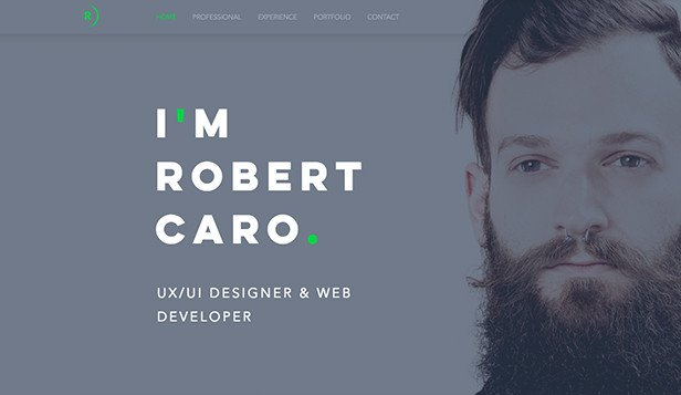 Web Developer Portfolio Templates Portfolio Website Templates Design