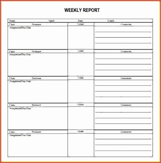 Weekly Activities Report Template 9 Excel Call Log Template Exceltemplates Exceltemplates